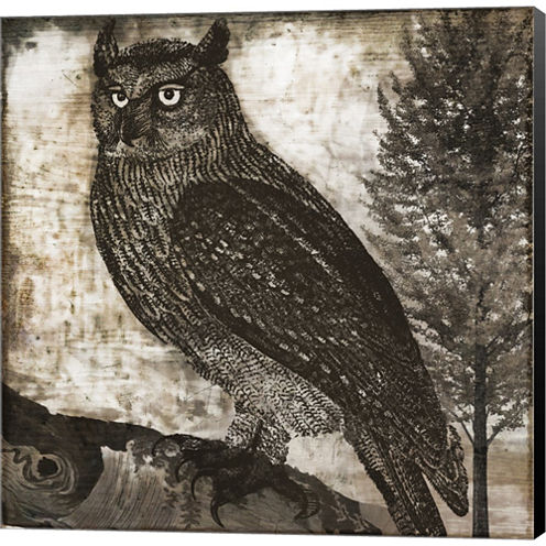 Owl 2 Gallery Wrapped Canvas Wall Art On Deep Stretch Bars