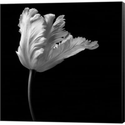 Metaverse Art Parrot Tulip Gallery Wrapped CanvasWall Art