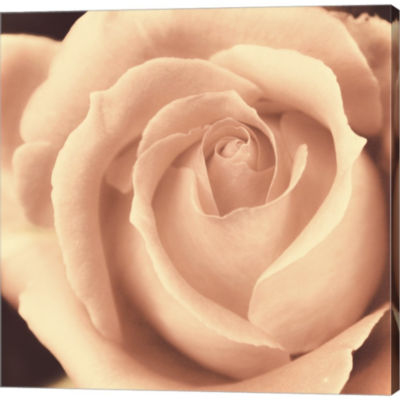 Metaverse Art Peach Rose Gallery Wrapped Canvas Wall Art