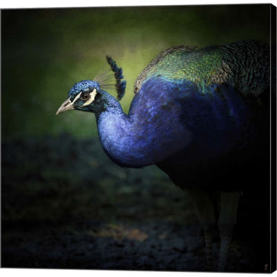 Peacock 1 Gallery Wrapped Canvas Wall Art On DeepStretch Bars