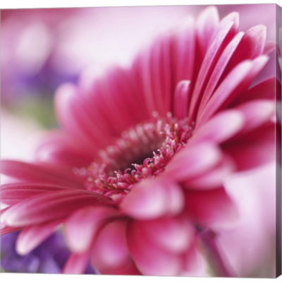 Metaverse Art Pink Daisy Gallery Wrapped Canvas Wall Art