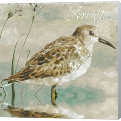 Metaverse Art Sand Piper I Gallery Wrapped CanvasWall Art