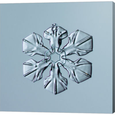 Metaverse Art Sectored Plate Snowflake 001.3.02.2014 Gallery Wrapped Canvas Wall Art