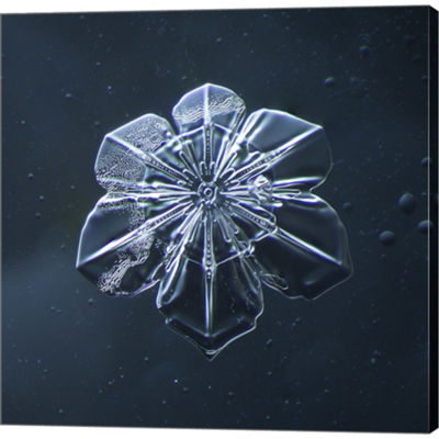 Metaverse Art Snowflake 009.2.9.2014 Gallery Wrapped Canvas Wall Art