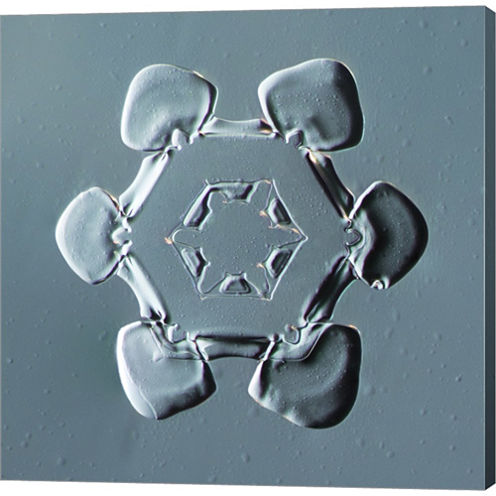 Stellar Plate Snowflake 001.2.14.2014 Gallery Wrapped Canvas Wall Art On Deep Stretch Bars