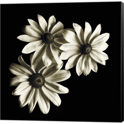 Metaverse Art Three Black-Eyed Susans Gallery Wrapped Canvas Wall Art