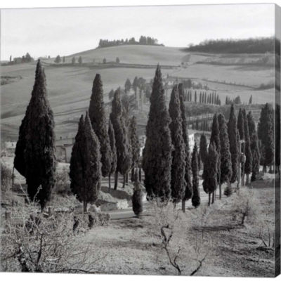 Metaverse Art Tuscany IV Gallery Wrapped Canvas Wall Art