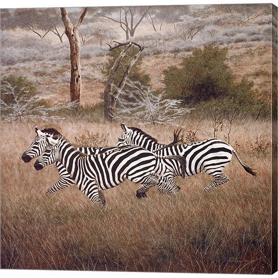 Metaverse Art Zebra by David Knowlton Gallery Wrapped Canvas Wall Art