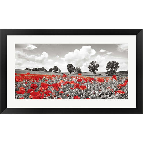 Poppies And Vicias In Meadow  Germany Framed PrintWall Art