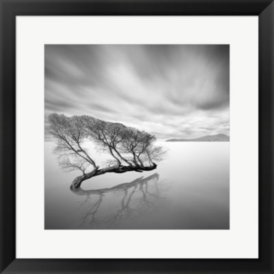 Water Tree VII Framed Print Wall Art