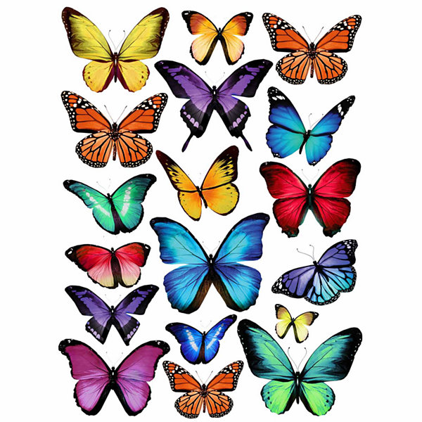 WallPops Papillion Multi Wall Art Kit
