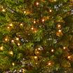 North Pole Trading Co. 7 Foot Laramie Slim Pre-Lit Christmas Tree