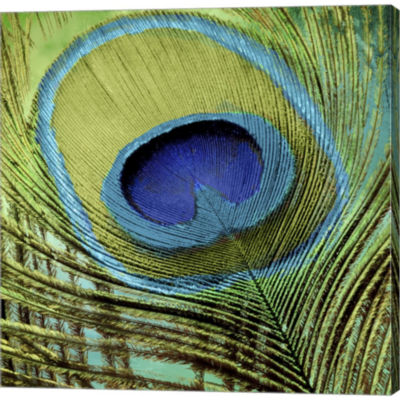 Peacock Candy V Gallery Wrapped Canvas Wall Art On Deep Stretch Bars