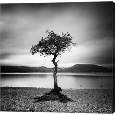 Millarrochy Tree Gallery Wrapped Canvas Wall Art On Deep Stretch Bars