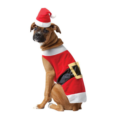 Santa Pet Costume