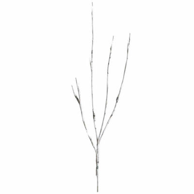 Apothecary Led Aspen Decorative Branch