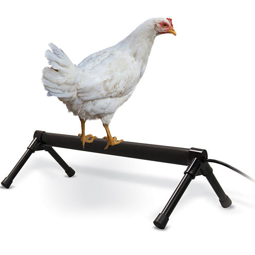 K & H Manufacturing Thermo-Chicken Perch