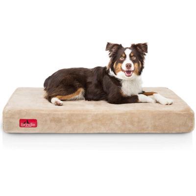 "Brindle 4"" Plush Memory Foam Orthopedic Dog Bed"