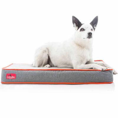 """Brindle Orthopedic 4"""" Medium Memory Foam Pet Bed"""""""