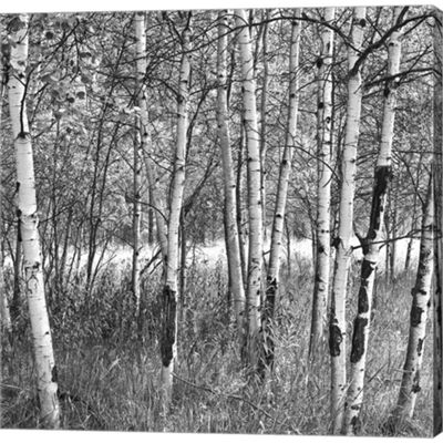 Metaverse Art Birch Forest Gallery Wrapped CanvasWall Art