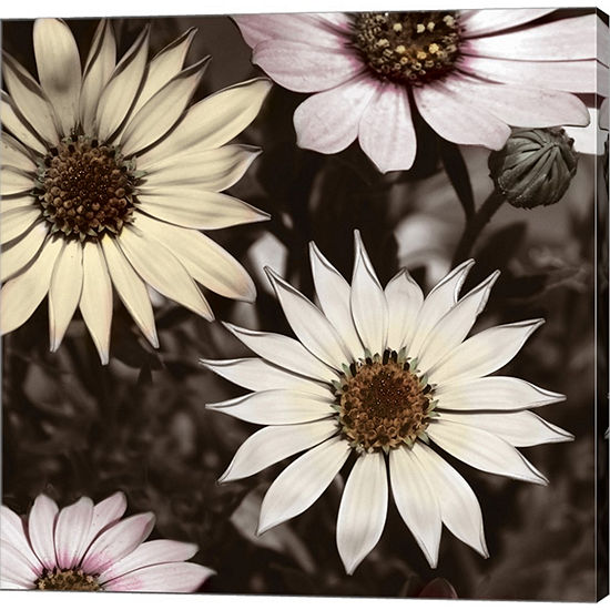 Metaverse Art Hint Of Spring I Gallery Wrapped Canvas Wall Art
