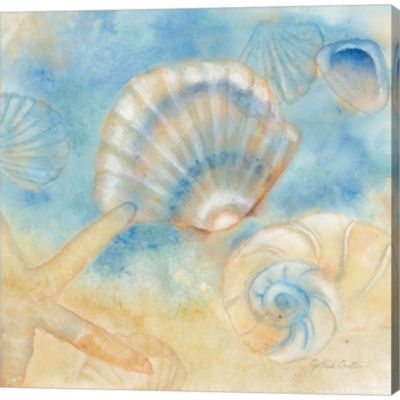 Metaverse Art Watercolor Shells II Gallery WrappedCanvas Wall Art