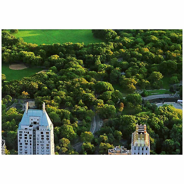 Brewster Wall Central Park Wall Mural 8-pc. Wall Murals