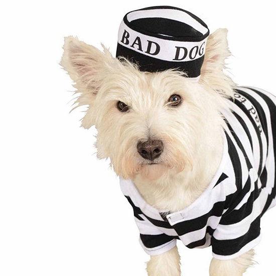 Buyseasons Prisoner Pet Costume