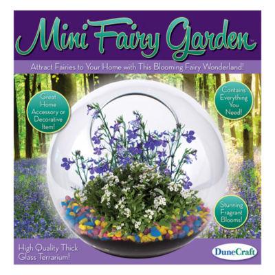 Dunecraft Glass Terrarium - Mini Fairy Garden