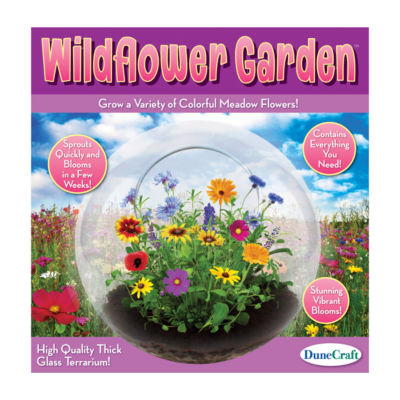 Dunecraft Glass Terrarium - Wildflower Garden