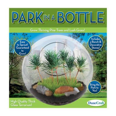 Dunecraft Glass Terrarium - Park in a Bottle