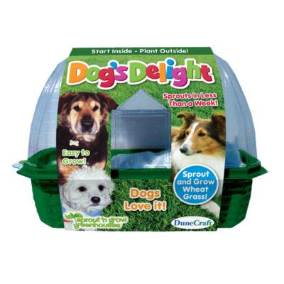 Dunecraft Dogs Delight Plant Kit