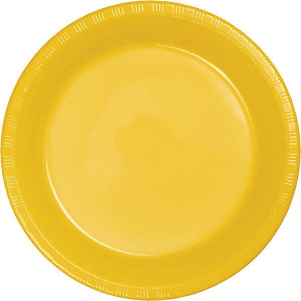 Touch of Color Plastic Dinner Plates