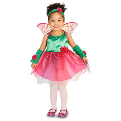 Fairy Princess Toddler Costume 2-4T