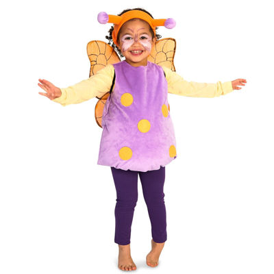 Magical Butterfly Toddler Costume 2-4T