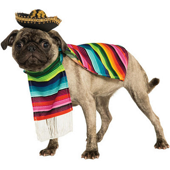 Buyseasons Mexican Poncho And Sombrero Pet Costume