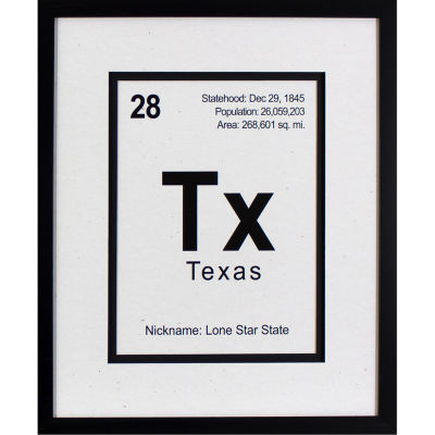 Decor Therapy Breaking Texas in Black Frame