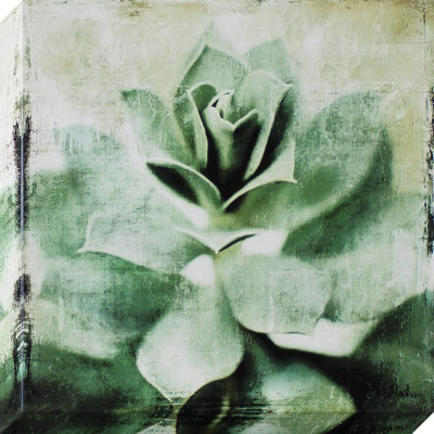 Decor Therapy Succulent Stretched Canvas