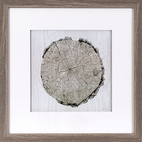 Decor Therapy Woodland Years in Gray Oak Wood Grain Frame