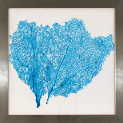 Decor Therapy Blue Sea Fan Study in Stainless Steel Frame