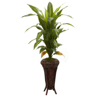"""57"""" Dracaena Silk Plant with Stand - Real Touch"""