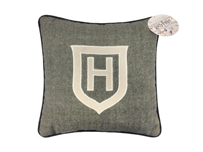 Warner Brothers Harry Potters Draco Dormiens Square Throw Pillow