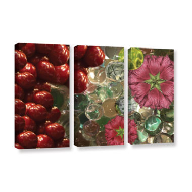Brushstone Bricks Braches Watermelon 3-pc. GalleryWrapped Canvas Wall Art