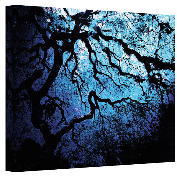 Brushstone Ice Blue Eve-Japanese Tree Gallery Wrapped Canvas Wall Art