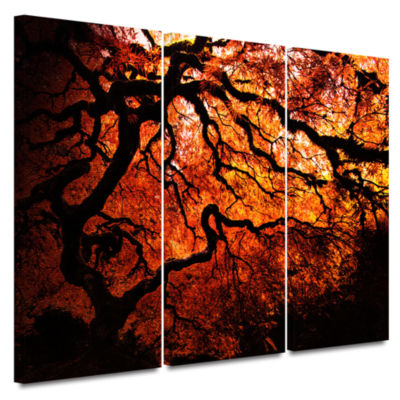 Brushstone Japanese Tree 3-pc. Gallery Wrapped Canvas Wall Art