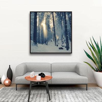 Brushstone Winter Light Gallery Wrapped Floater-Framed Canvas Wall Art