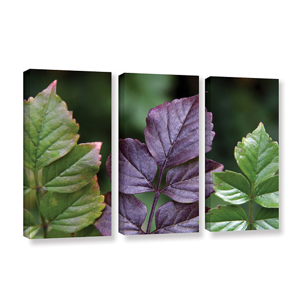 Brushtone Fitting In 3-pc. Gallery Wrapped CanvasWall Art