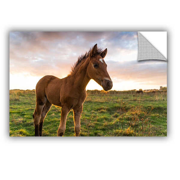 Brushtone Foaly Removable Wall Decal