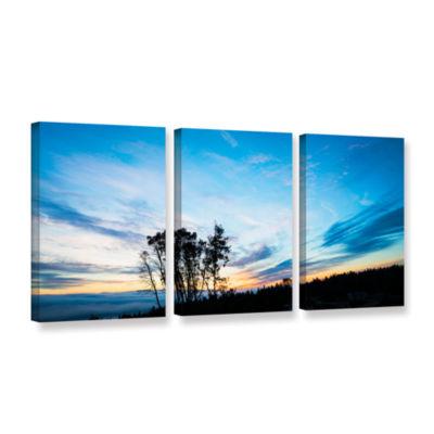 Brushtone Foggy Sunrise 3-pc. Gallery Wrapped Canvas Wall Art