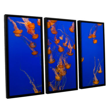 Brushtone Flowing Pacific Sea Nettles 2 3-pc. Floater Framed Canvas Wall Art